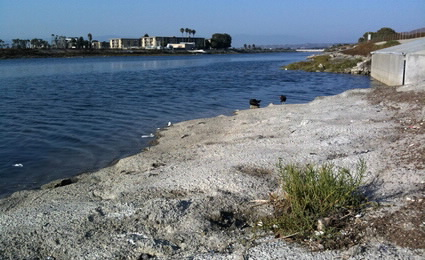 Ballona C Creek