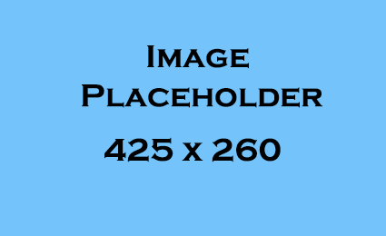 Placeholder_425x260