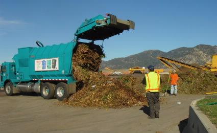 Green Waste Photo