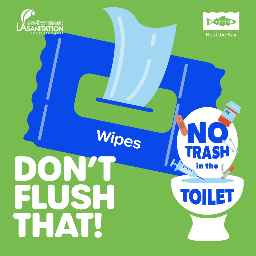 Don't Flush That - Wipes